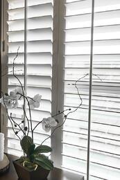 bigstock-Plantation-style-elegant-shutt-50882714