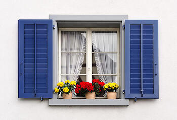 Window with blue shutters and flowers